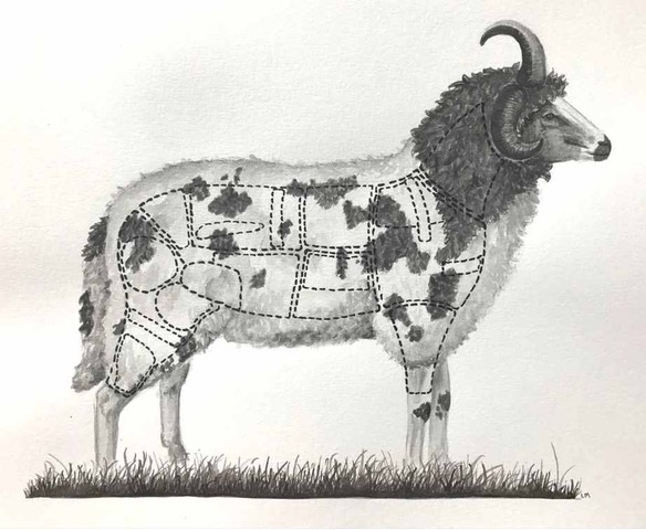 The Whole Hogget (Summer 2018)