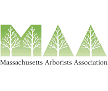 Massachusetts Arborists Association