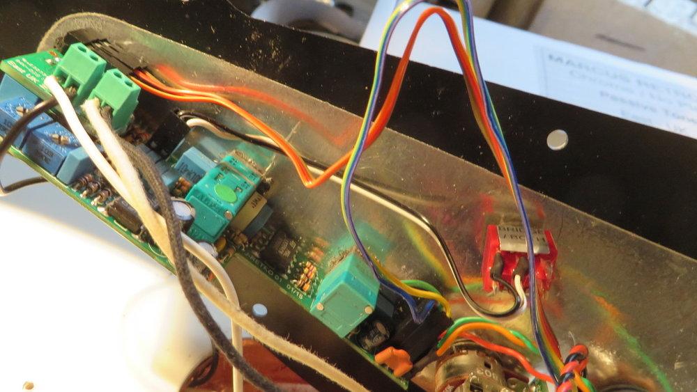 - Jetzt schrauben wir die schwarzen und weissen Kabel der beiden Tonabnehmer an die dafür vorgesehenen Pickup-Terminals an.