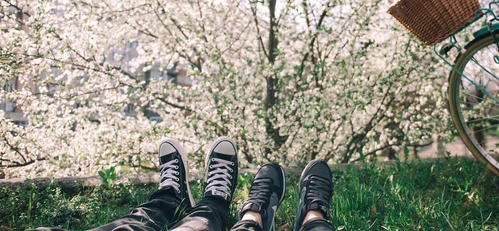 blogg_maj.jpg