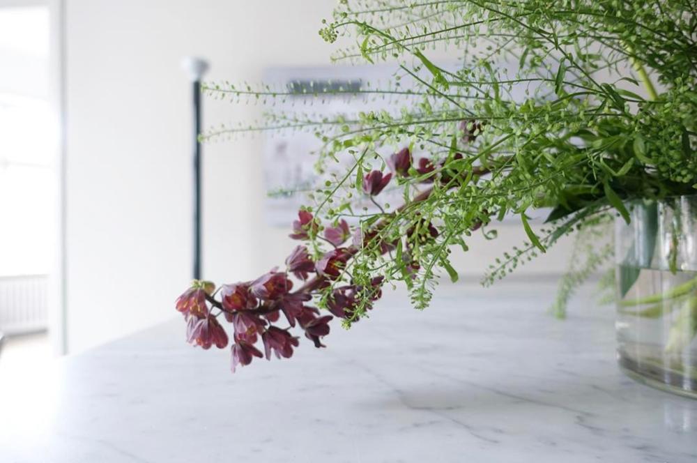 Blommor från  @asplundklingstedtinterior