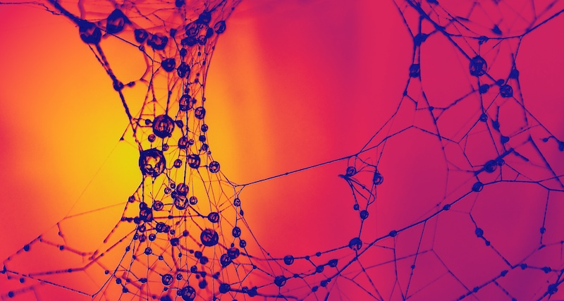 Forming new synapses helps slow the progress of Alzheimer's