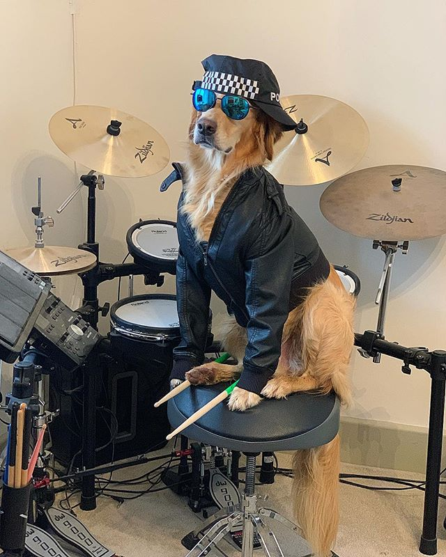 Did you just touch my drum kit? #watchingcops