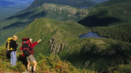 Parc de la Gaspésie  Photo : SEPAQ
