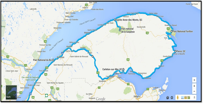 photo_gaspesie_route.png