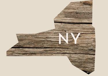 ALL_States_new_NY.jpg
