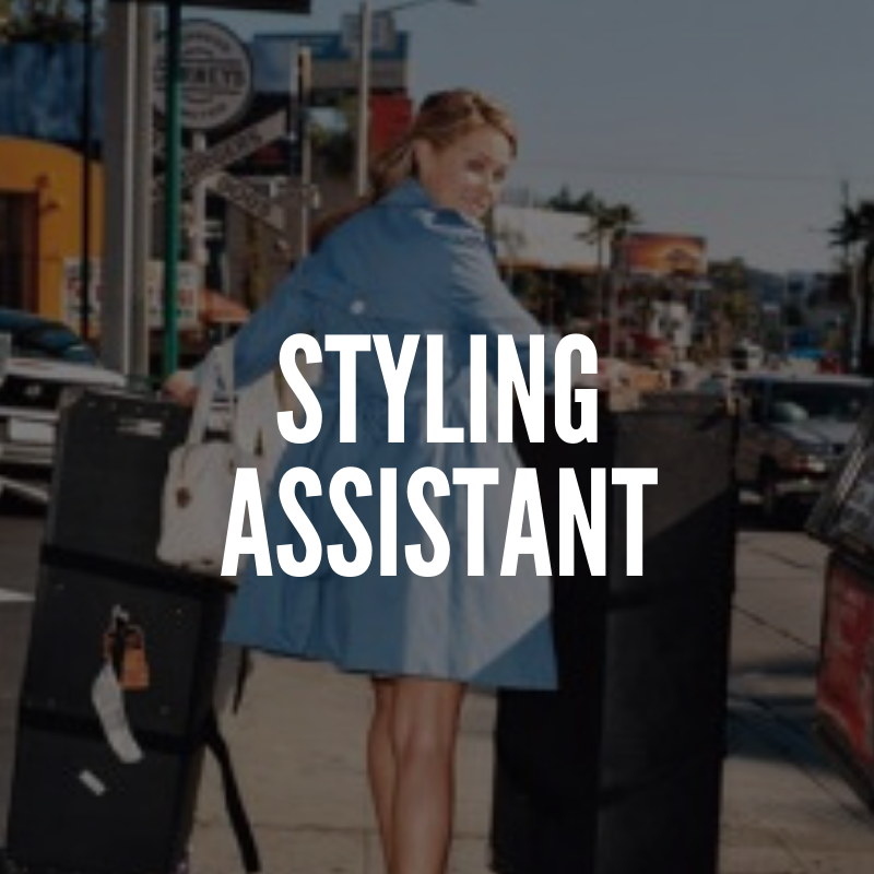Styling assistant, fashion industry