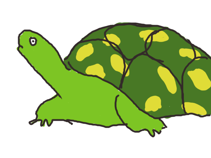 Animal_turtle3.png
