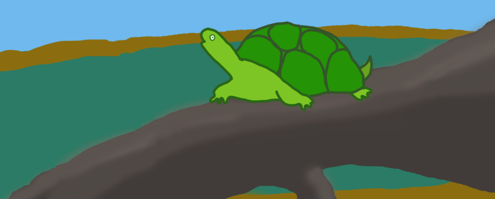 Turtle on a Log by Jane Aaron