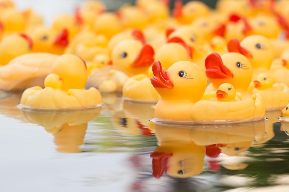 duckderby.jpg