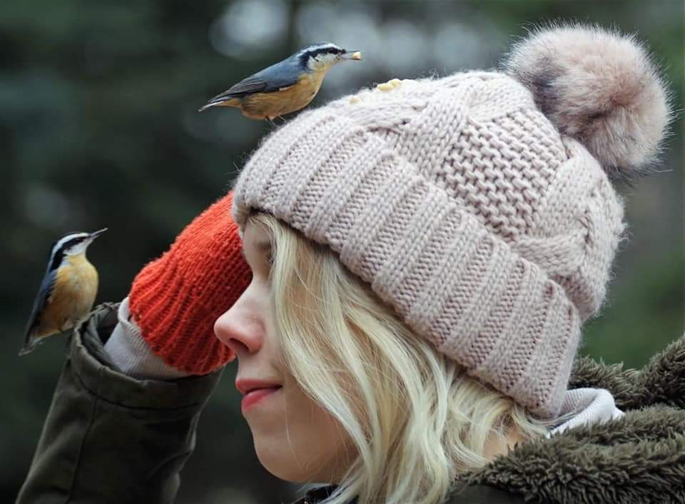 Two birds are better than one! Nakita never hand fed birds before, so having the nuthatches take pine nuts off of her hat was quite an experience - plus she fed many nuthatches and chickadees by hand. (Photo by Kim Epp)