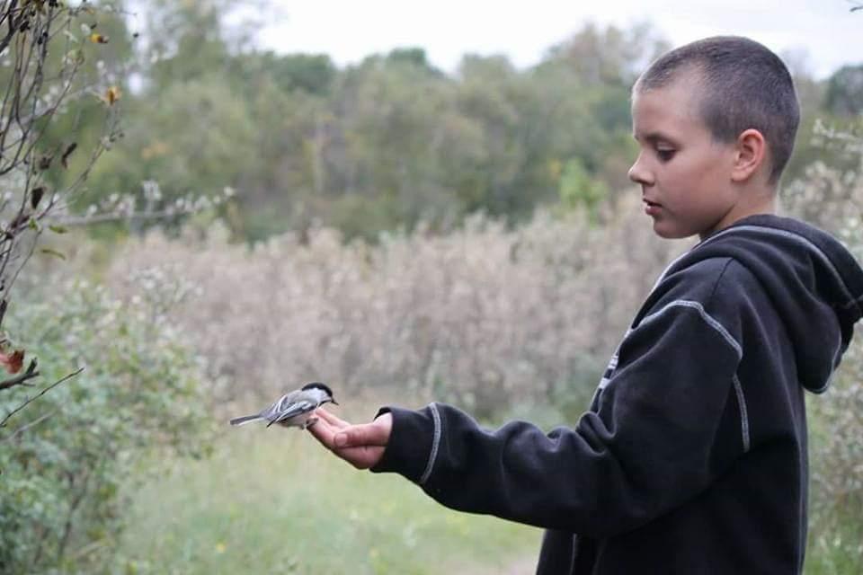 Mathew, feeding a chickadee for the first time in his life. Beaver Creek, Saskatoon (Photo by Kim Epp)