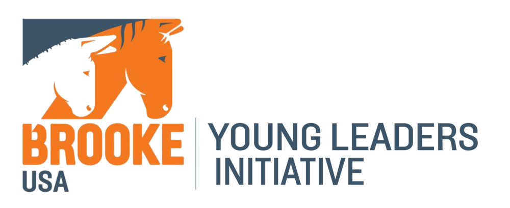 Young Leaders Initiative.png