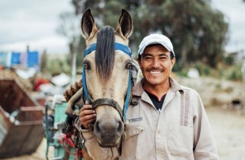 The Brooke recently began a pilot project to help horses who work in a garbage dump in Mexico.