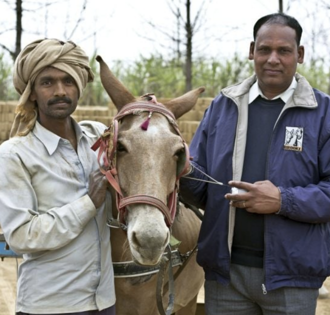 A Brooke veterinarian in India with a donkey and owner.