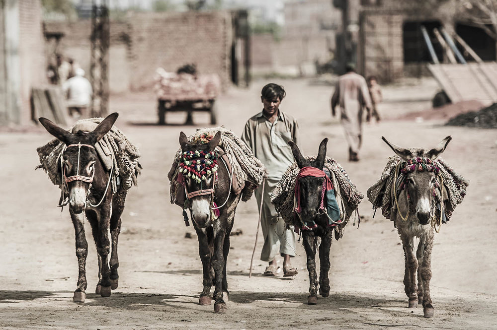 Image5,BrickKiln,Gujranwala,Pakistan.jpg