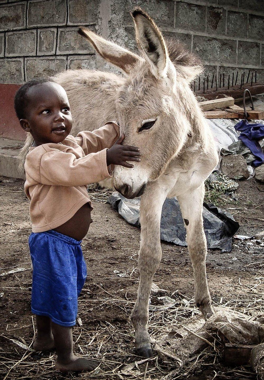 Boy and donkey foal in Kenya. www.BrookeUSA.org.jpg