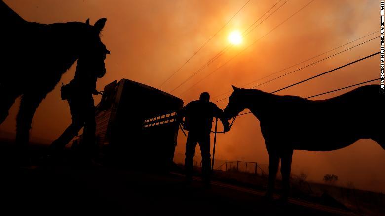 171208003749-california-fires-animals-horses-2-exlarge-169.jpg