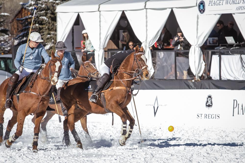Snow polo.jpg