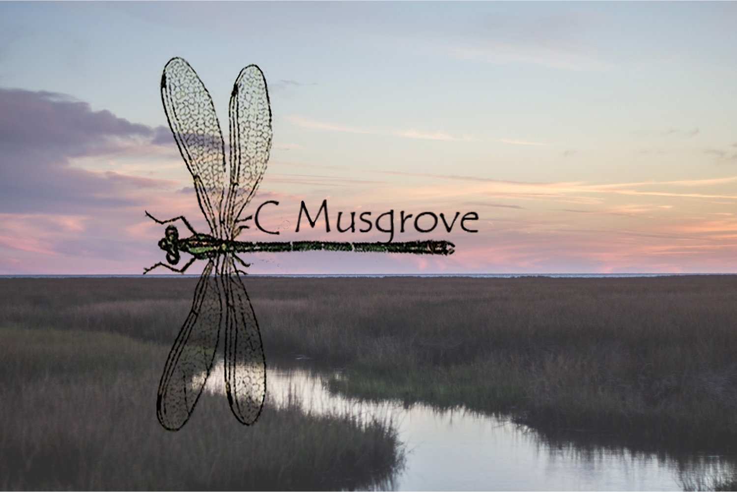 C Musgrove Photography