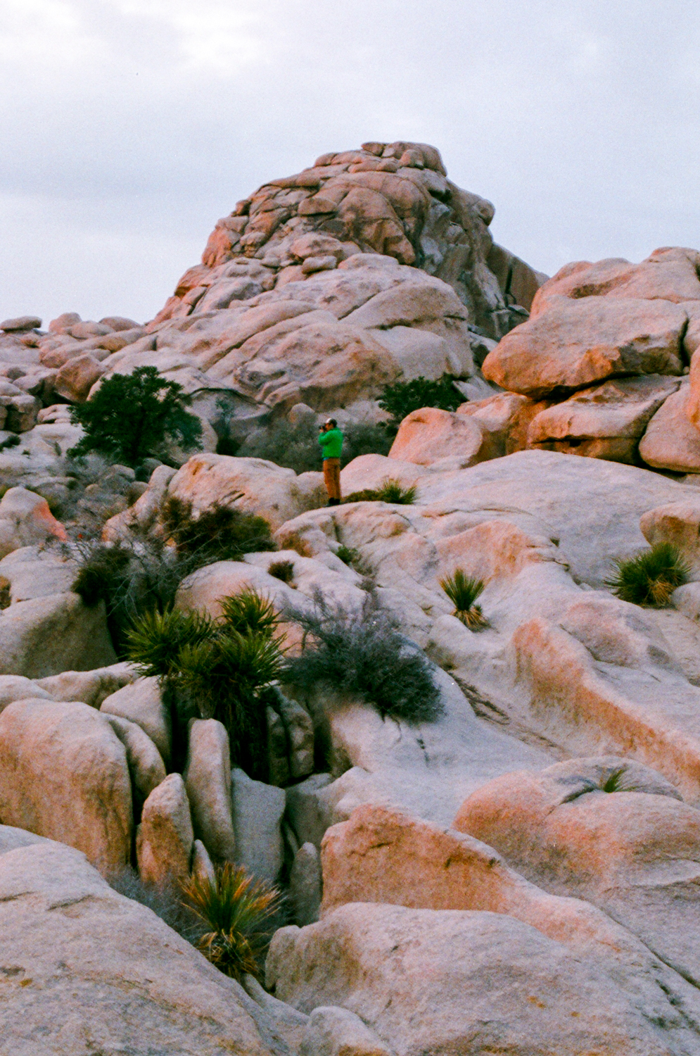 Finding the best sunset perch in Joshua Tree