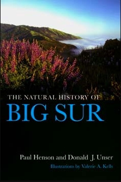 - Each year millions of people visit the area of rugged California coastline and wild mountains known as Big Sur. Finally here is a book that is both a natural history of this beautiful region and an excellent guide to its extensive public lands. The first section introduces the area's geology, climate, flora, fauna, and human history. The second section describes selected sites, trails, and features that are mentioned in Part One.As increasing tourism, development pressure, and land-use decisions continue to affect Big Sur, this book will do much to heighten awareness of the region's biotic richness and fragility. Written in nontechnical language, with generous color photographs, drawings, maps, species lists, and a bibliography, it will attract both the casual and the serious naturalist, as well as anyone concerned about preserving California's natural heritage.