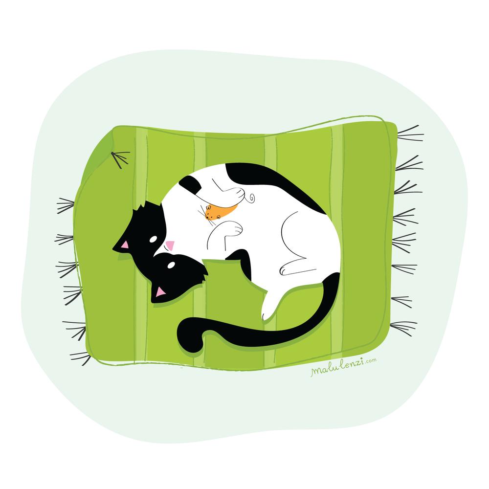 pet_cat_malulenzi.png