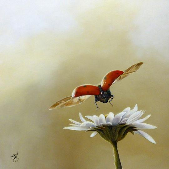 Lady Bug Daisy - 36x36 acrylic