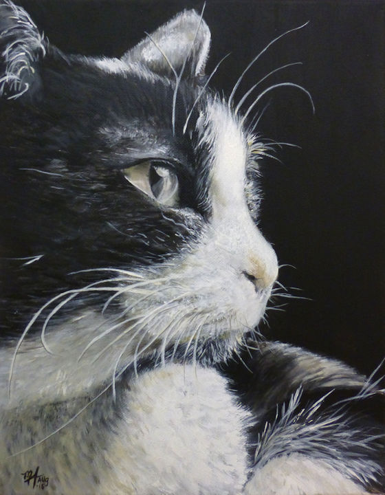 Black & White Cat - 11x14 acrylic