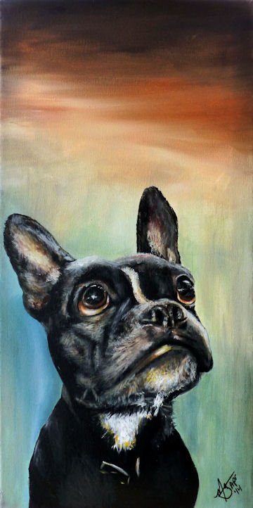 Chopper the Frenchton - 12x24 acrylic
