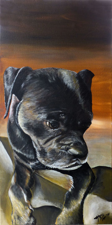 Chuck the Puggle - 12x24 acrylic