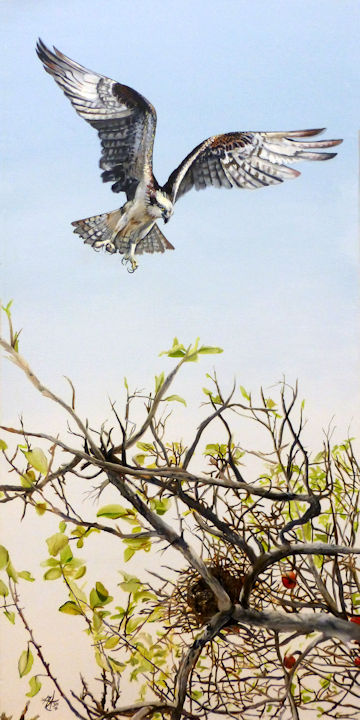 Osprey, One Flew Over the Cuckoos Nest - 24x48 oil