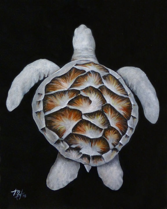 Center Sea Turtle - 8x10 acrylic