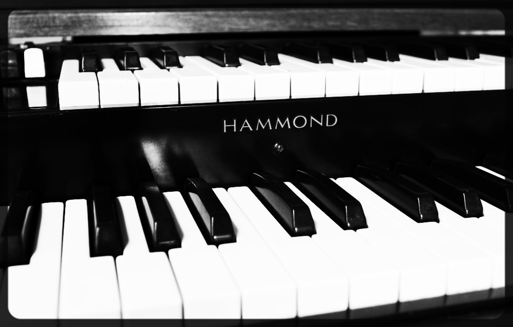 Hammond M.jpg
