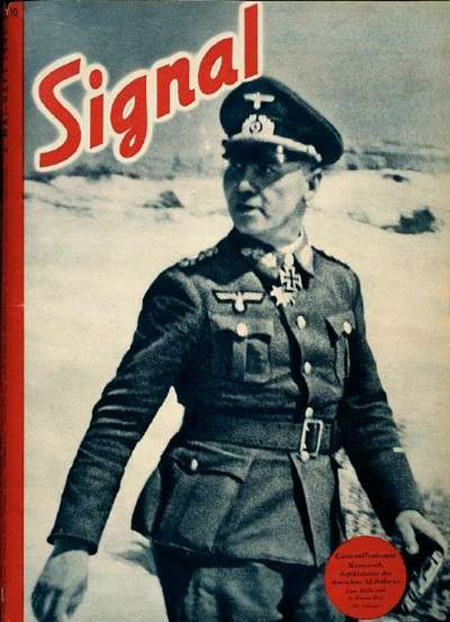 Signal (2).jpg
