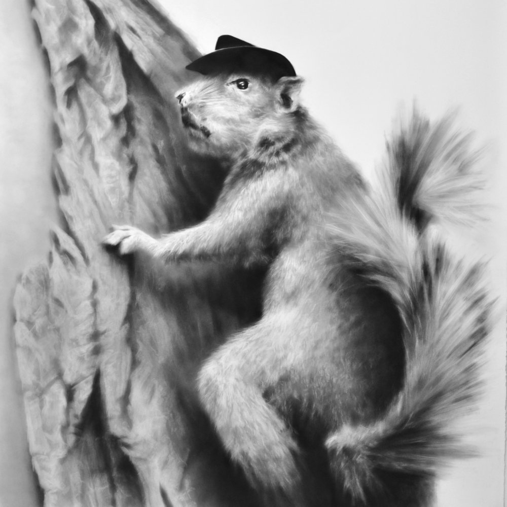 """The Billy, The Squirrel"", Graphite on paper, 38 x 38 inches, 2012"