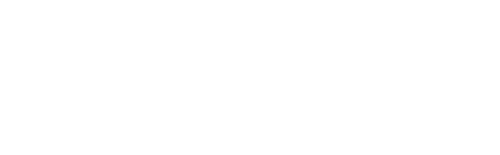 Digital Pioneers Academy
