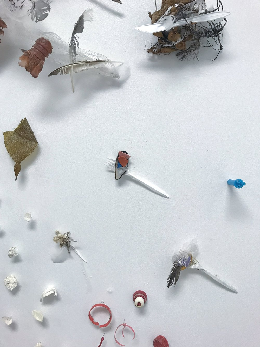 More Plastic Than Fish, Installation (6 of 20).jpg