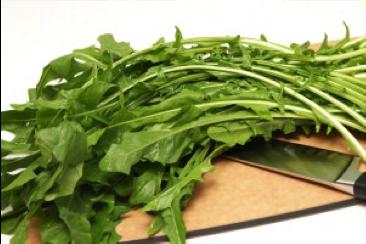 dandelion-chop.png