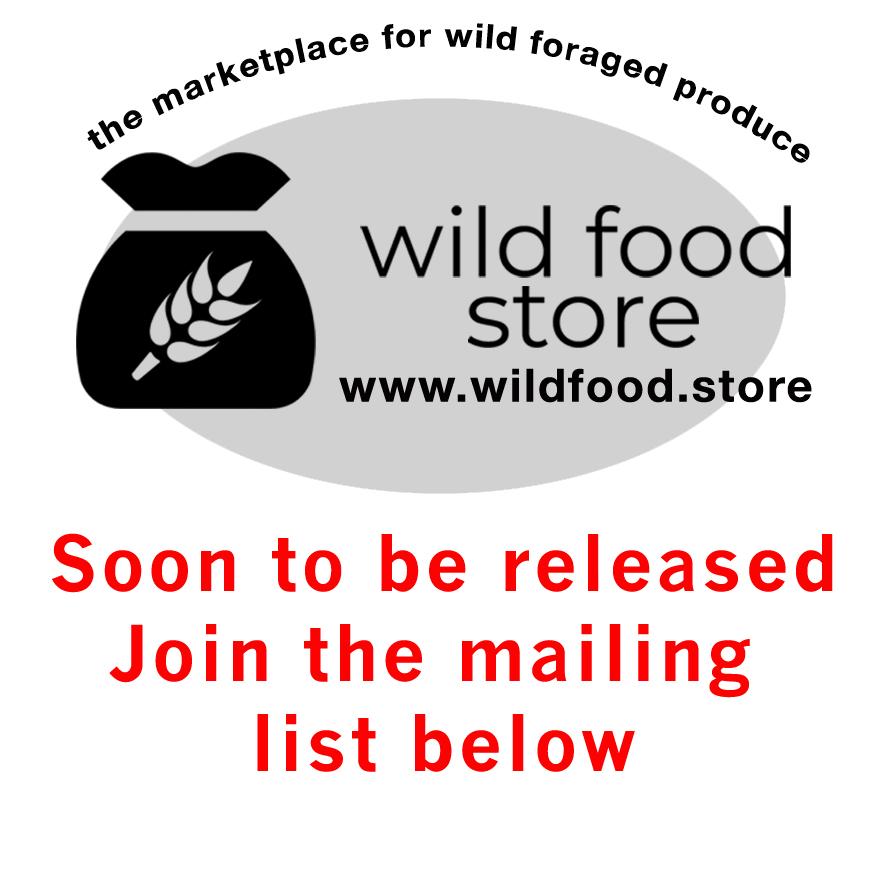 WFS-soon in your inbox.jpg