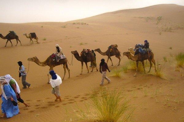 3-jours-en-passant-par-les-oasis-de-Tamaris-et-Laoued-Naam-600x400.jpg