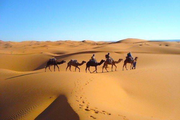 5-jours-en-passant-par-les-dunes-La-Hamada-et-Erg-Ez-zahar-600x400.jpg