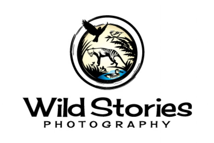 WILD STORIES PHOTOGRAPHY