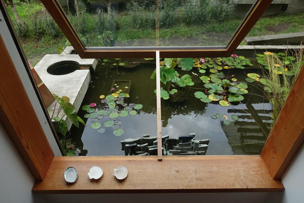 3 Belmont Garden Room looking into pond 3 of 8.JPG