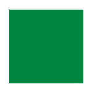 OA-Logo-Green@4x copy.png