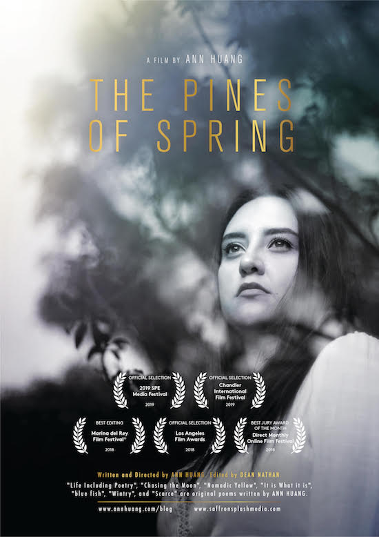 the pines of spring best short film