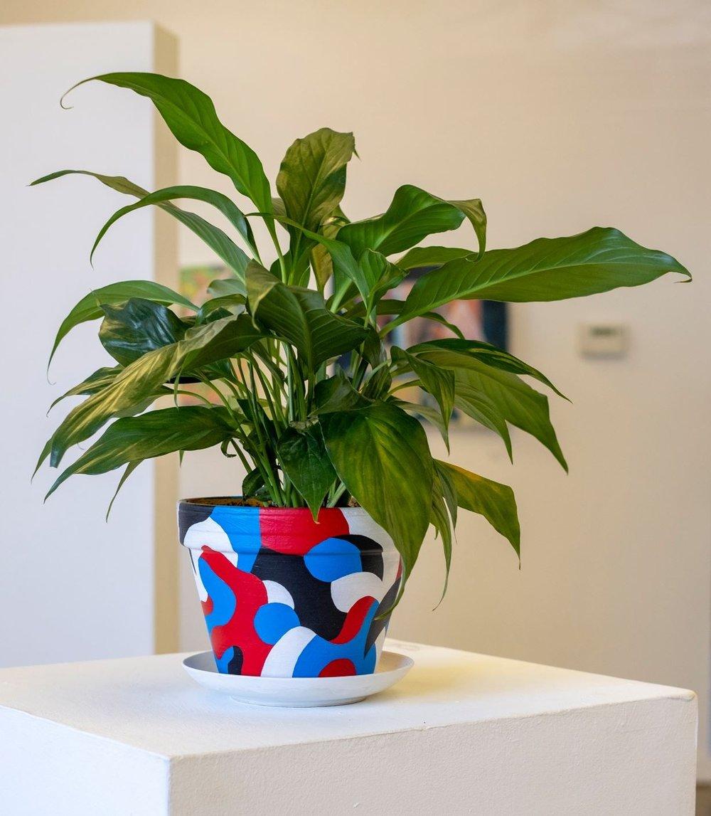 pot (w plant) - 2018 acrylic, water & dirt