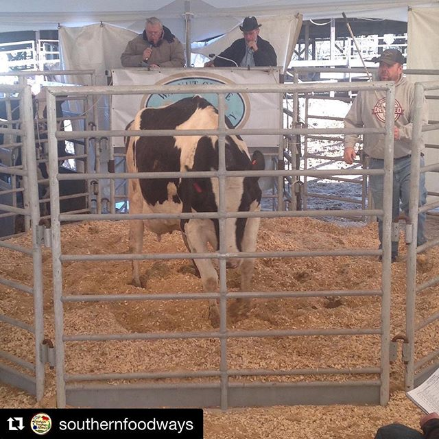 #Repost @southernfoodways with @get_repost ・・・ Photo by Allison Salerno. When we pour a glass of milk, most of us don't consider the economics that brought that milk from a cow to our kitchen. #Gravy ow.ly/Tb2B30kvhqg