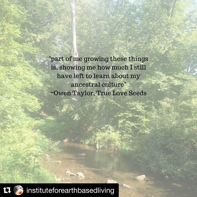 #Repost @instituteforearthbasedliving with @get_repost ・・・ In the most recent episode of THE ROSE HIP ROAD TRIP, I talk with Owen Taylor from True Love Seeds about supporting culture and cultural foods through seed saving, farming as a spiritual practice and emancipatory education. To hear the full episode, click on the link in bio or find it in the podcast app on your iPhone. #rosehip #rosehiproadtrip #earth #earthbased #earthbasedliving #juice #juicebar #freshjuice #food #plantbased #vegan #yoga #urbanecology #socialjustice #medicine #plantmedicine #spirituality #research #environment #environmentalism #holistichealth #wellness