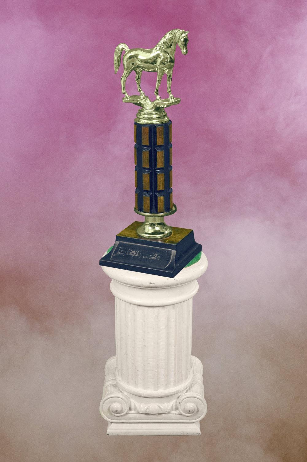 trophy_horse.jpg